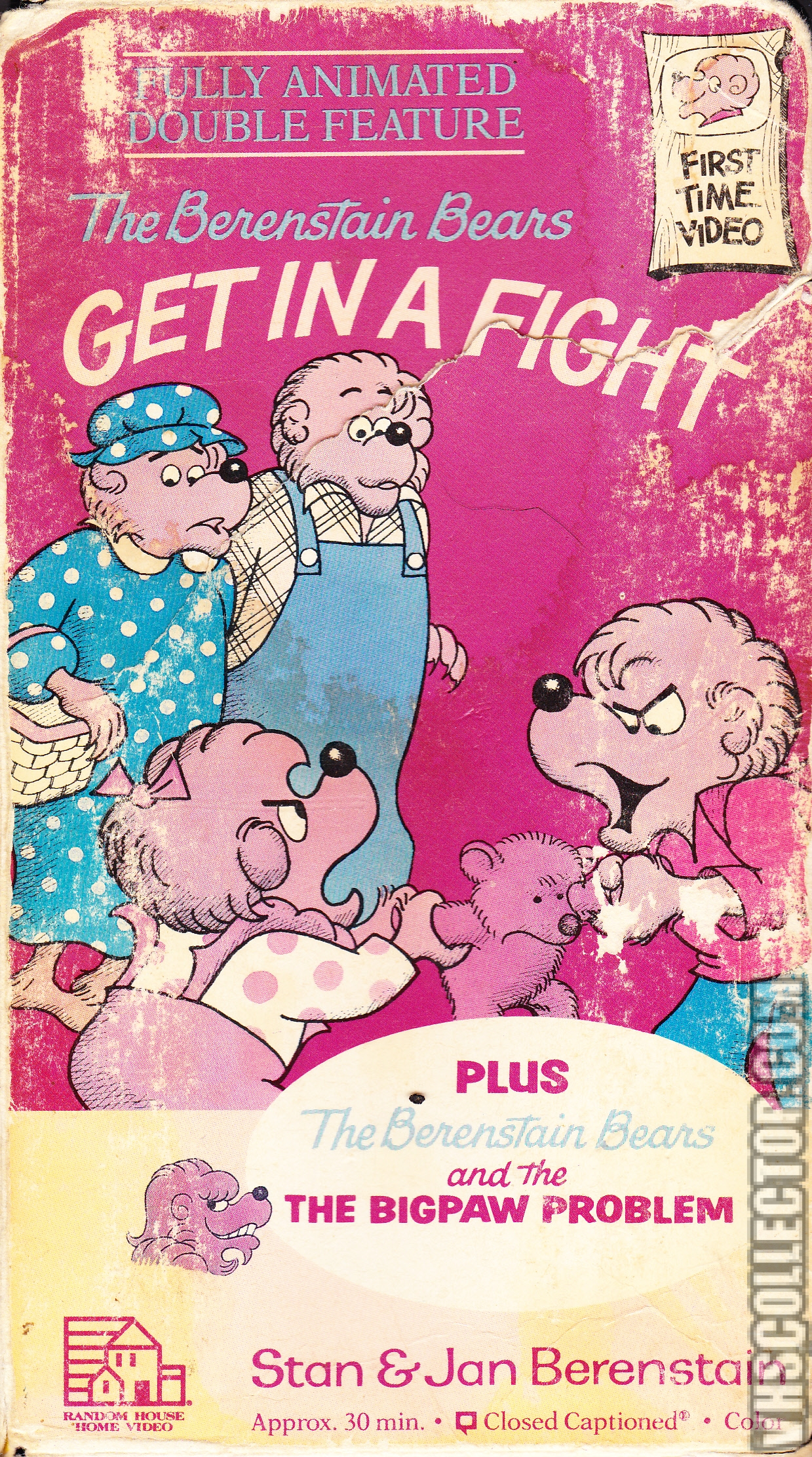 The Berenstain Bears Get In The Fight Vhscollector Com