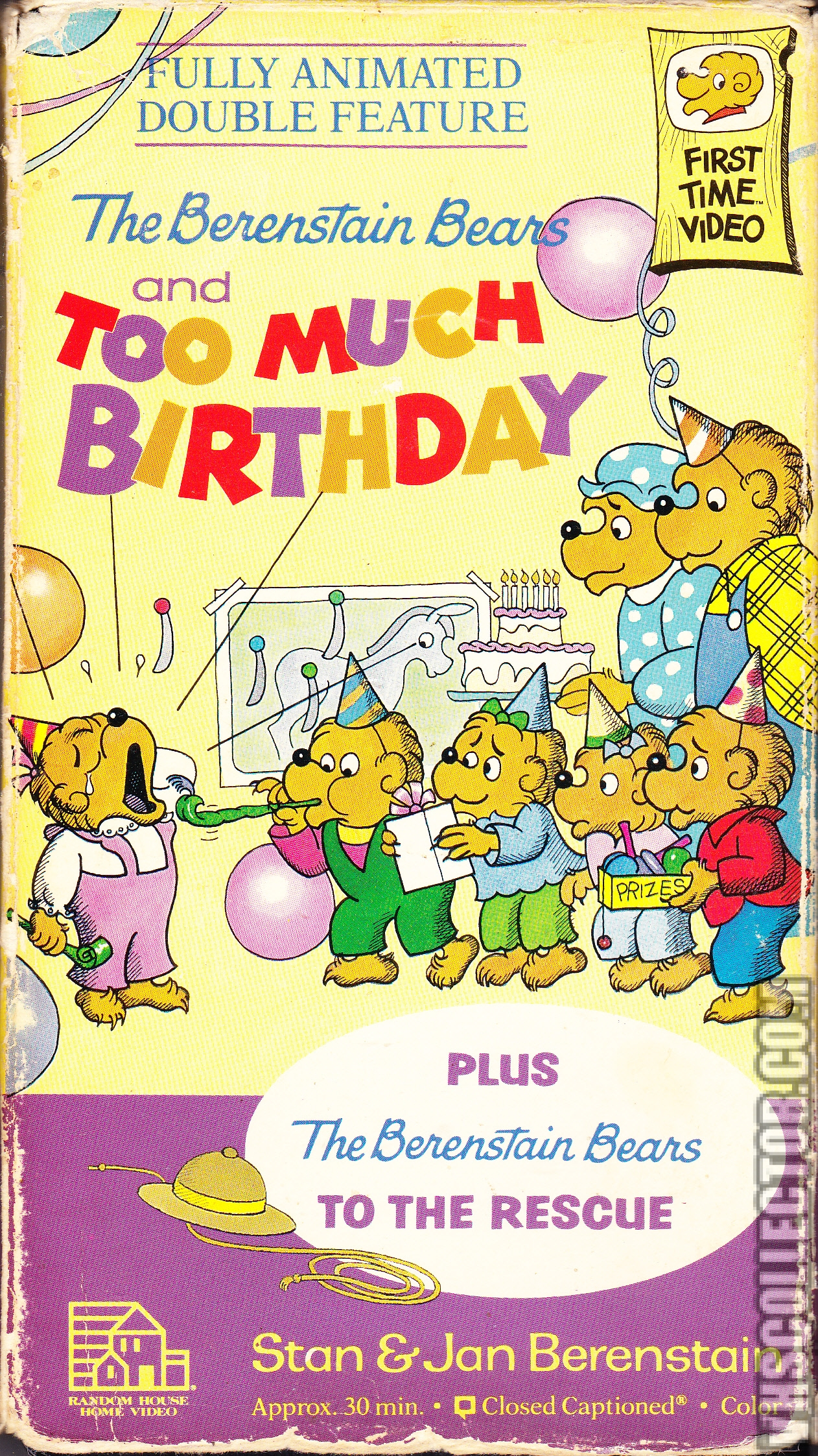The Berenstain Bears And Too Much Birthday Vhscollector Com