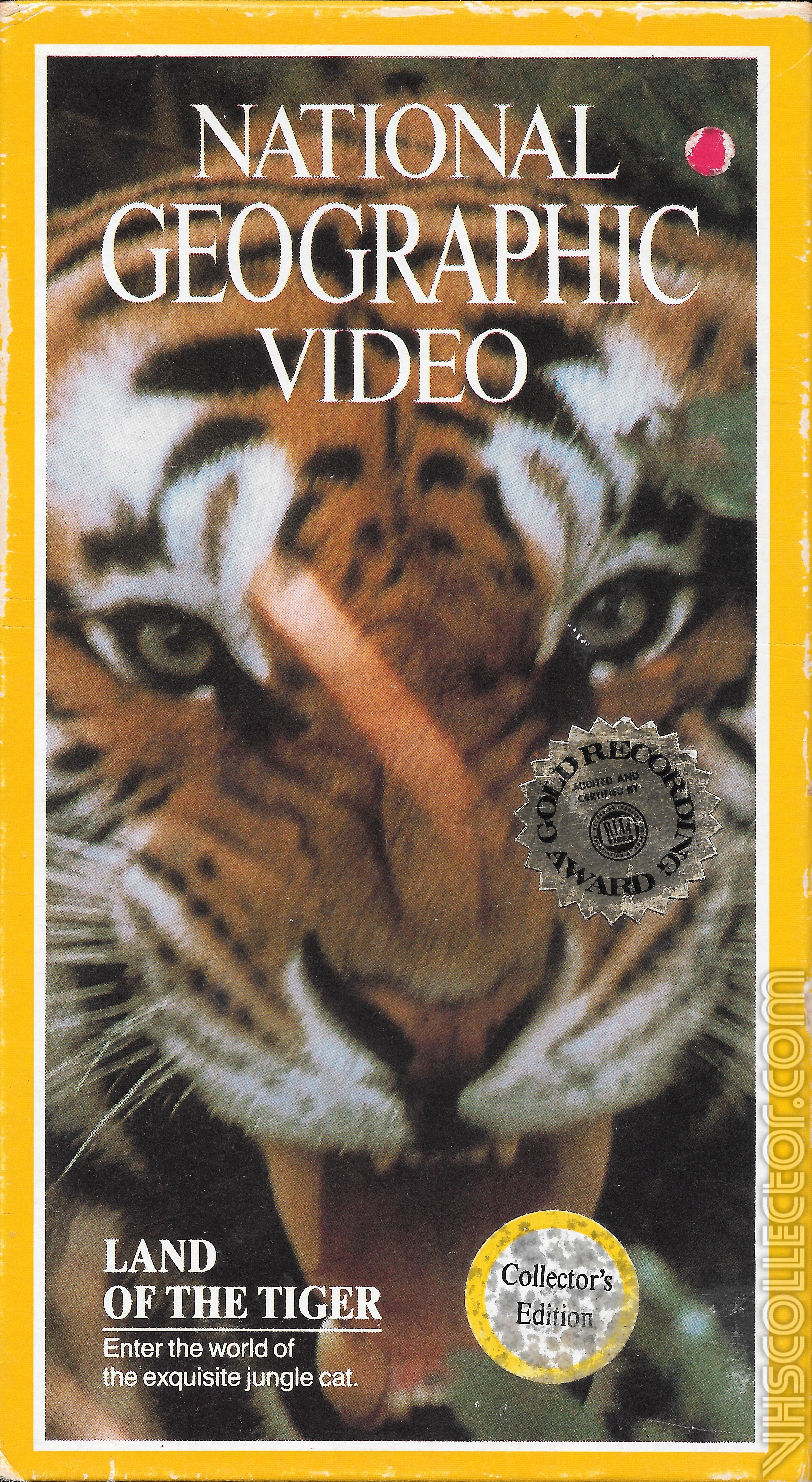 National Geographic Video  Land Of The Tiger